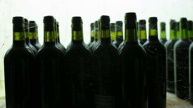 vino-BLOG-tamuja